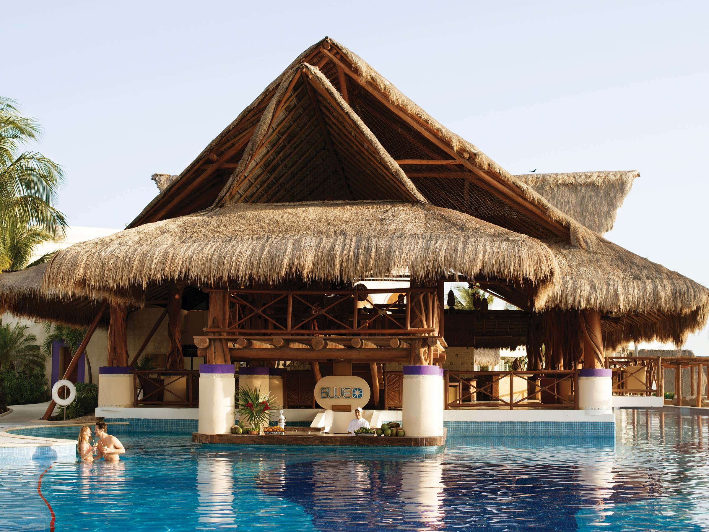 Swim-Up Bar at an All Inclusive Resort